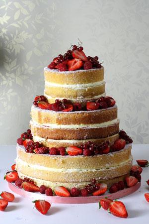 Naked cakes le papillion